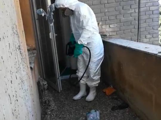 Úklid a čištění holubího trusu